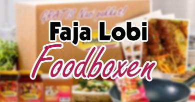 faja lobo surinaamse maaltijdbox